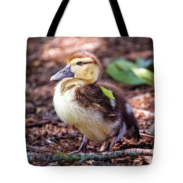 Baby Duck Sitting Tote Bag by Stephanie Hayes