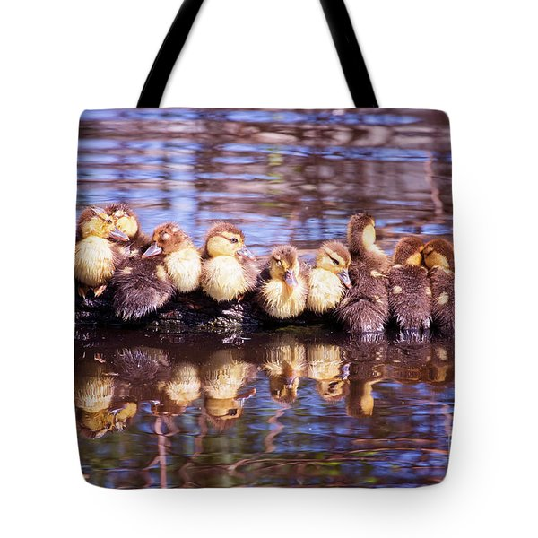 Baby Ducks On A Log Tote Bag by Stephanie Hayes
