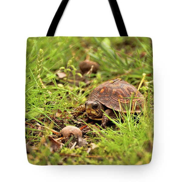 Baby Eastern Box Turtle Tote Bag