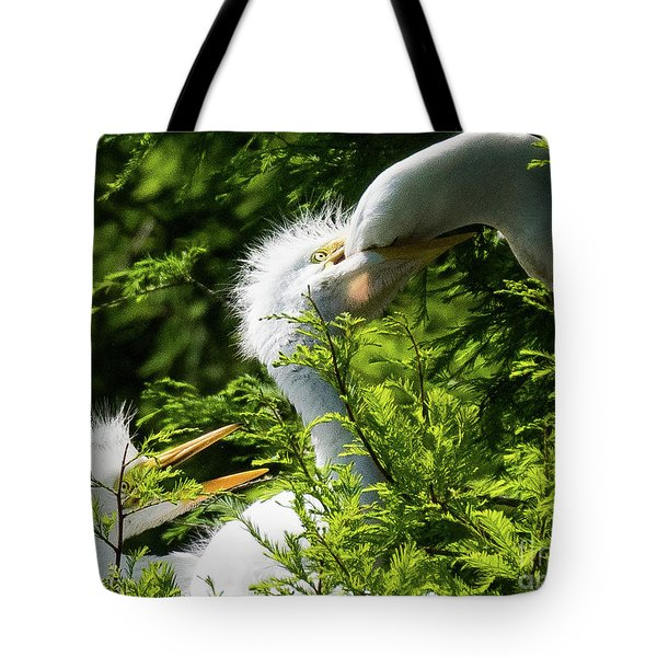 Baby Egrets Being Feed Tote Bag