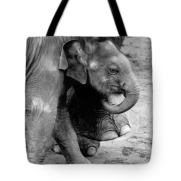 Baby Elephant Security Tote Bag by Wes and Dotty Weber