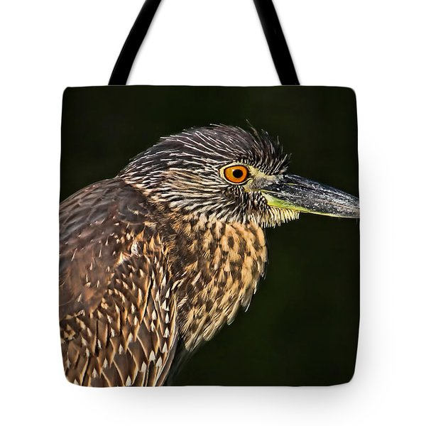 Baby Face - Yellow-crowned Night Heron  Tote Bag by HH Photography of Florida