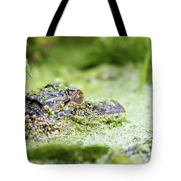 Baby Gator Tote Bag