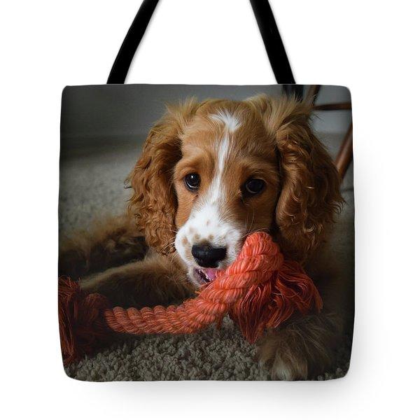 Baby Gizmo Tote Bag