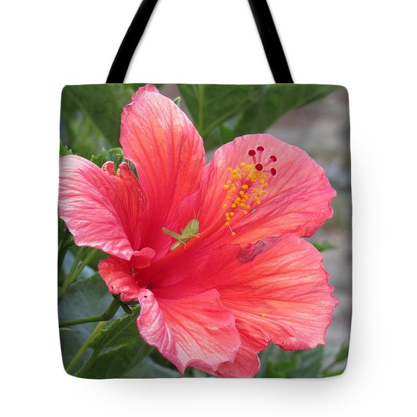Tote Bag featuring the photograph Baby Grasshopper On Hibiscus Flower by Nancy Nale