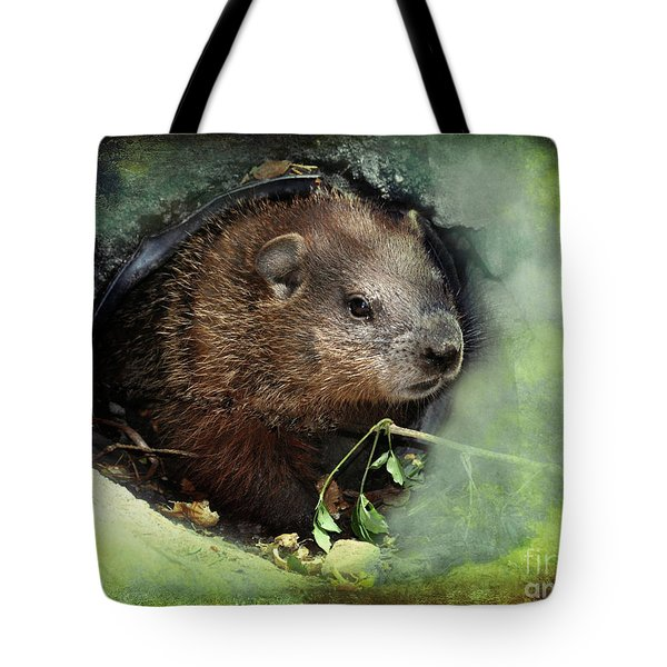 Tote Bag featuring the photograph Baby Groundhog by Elaine Manley