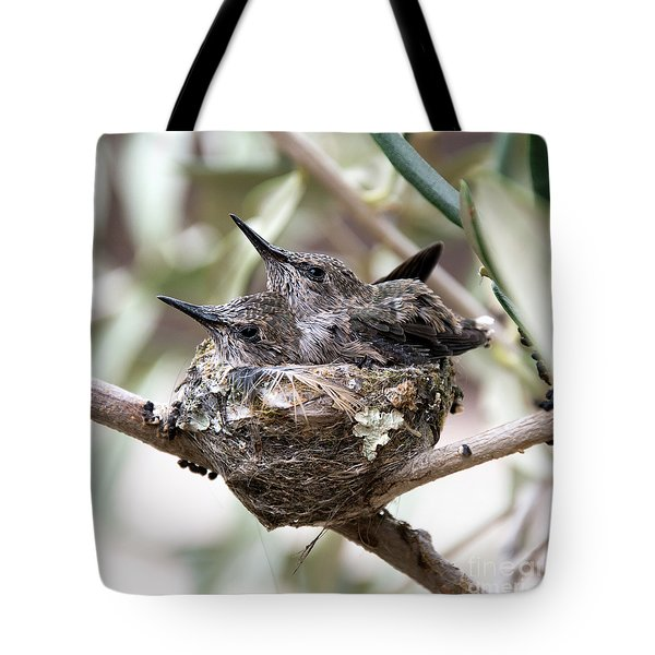 Baby Hummingbirds Outgrowing Their Nest Tote Bag