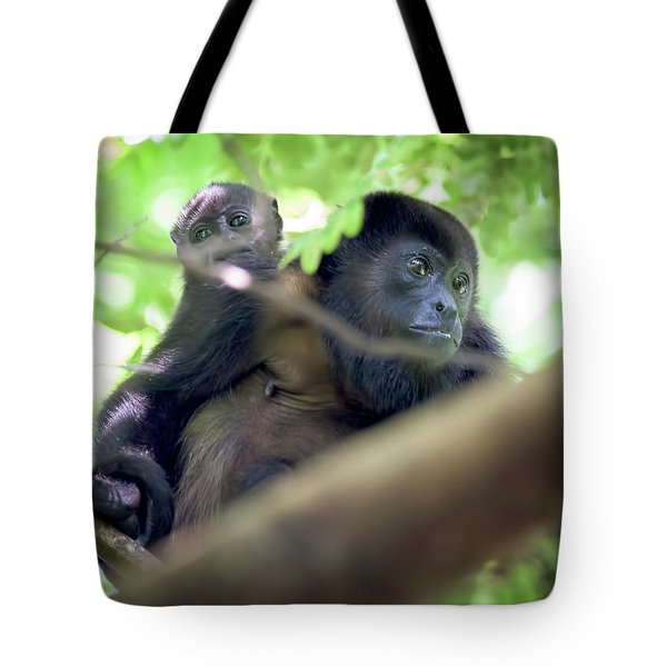 Baby In Tow. Tote Bag
