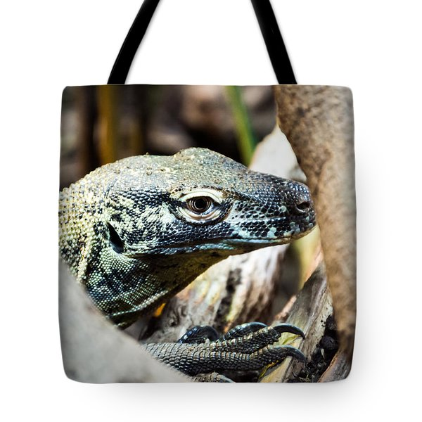 Tote Bag featuring the photograph Baby Komodo Dragon by Scott Lyons