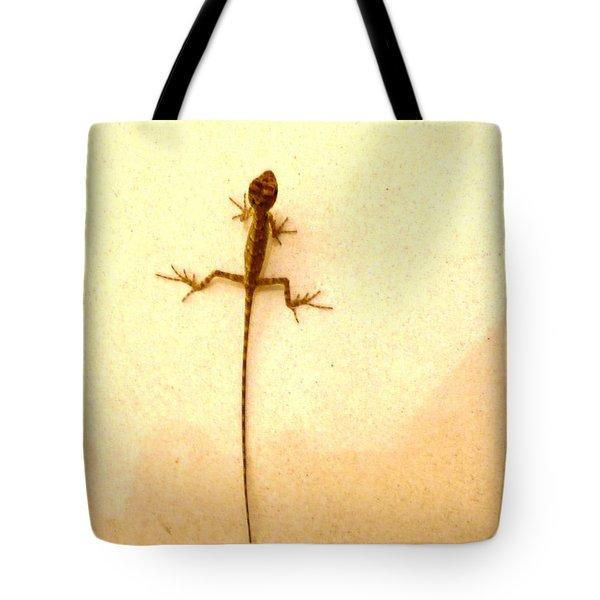Baby Lizard Tote Bag by Piety Dsilva