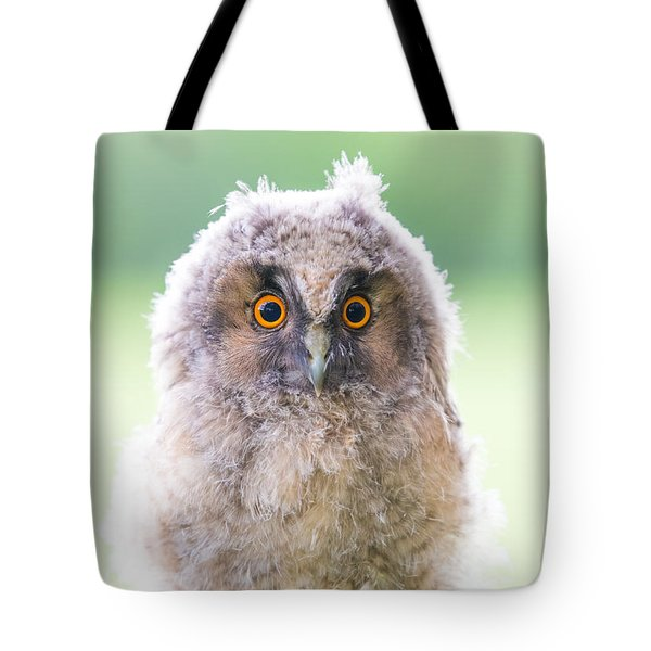 Baby Long-eared Owl Tote Bag by Janne Mankinen
