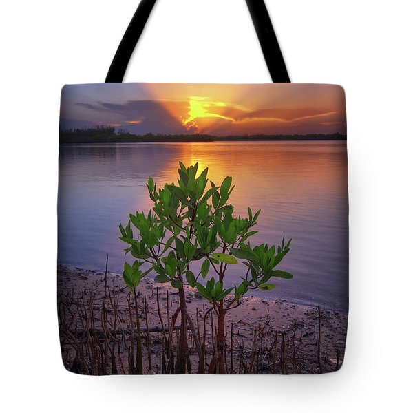 Baby Mangrove Sunset At Indian River State Park Tote Bag by Justin Kelefas