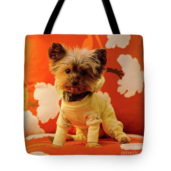 Tote Bag featuring the photograph Baby Mel In Pjs by Irina ArchAngelSkaya