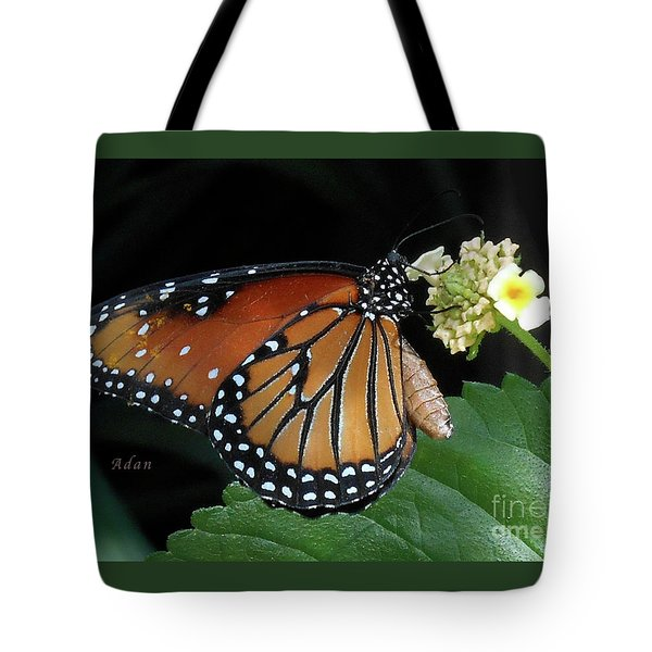 Baby Monarch Macro Tote Bag by Felipe Adan Lerma