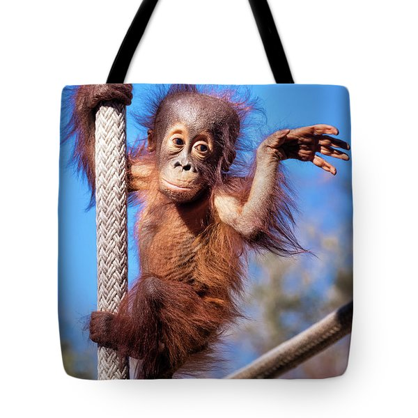 Baby Orangutan Climbing Tote Bag by Stephanie Hayes