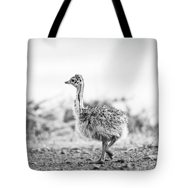 Tote Bag featuring the photograph Baby Ostrich Black And White by Tim Hester