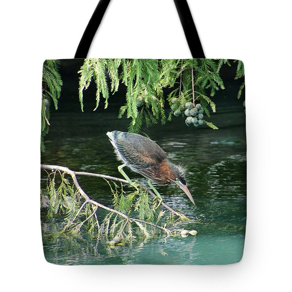 Baby Out On A Limb Tote Bag