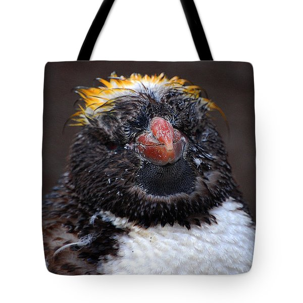 Baby Penguin Tote Bag by Rob Hawkins
