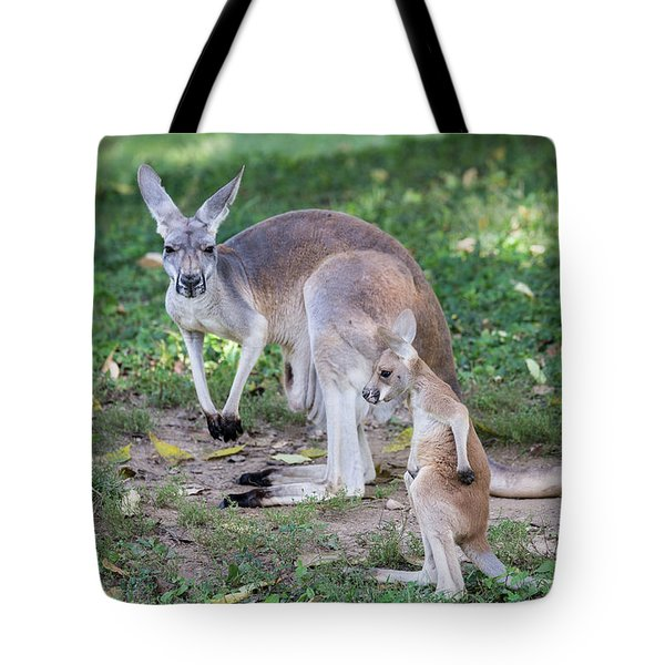 Baby Roo Tote Bag
