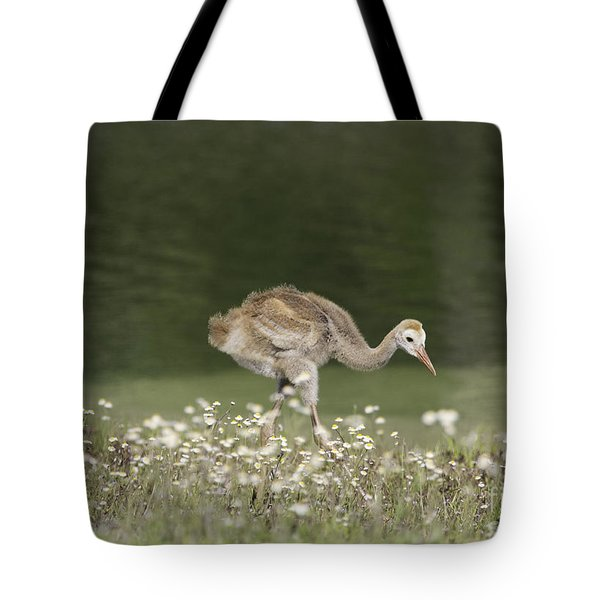 Baby Sandhill Crane Walking Through Wildflowers Tote Bag