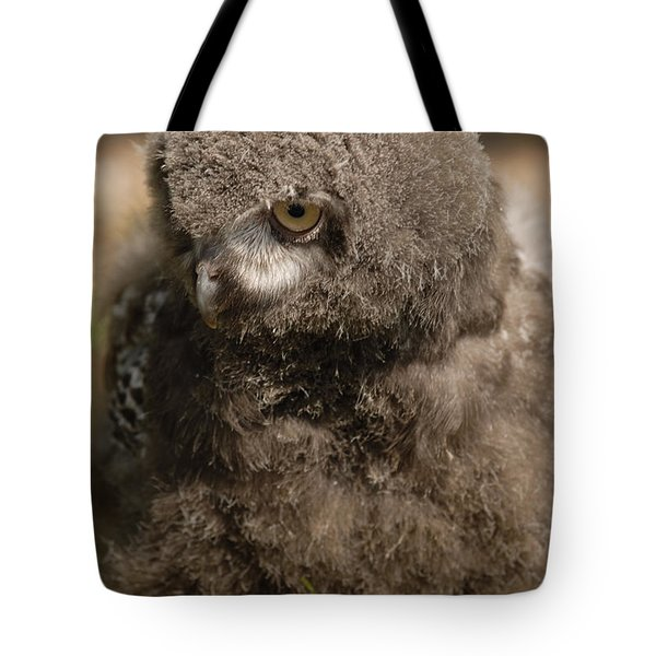 Tote Bag featuring the photograph Baby Snowy Owl by JT Lewis
