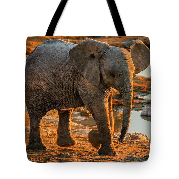 Baby Steps Tote Bag
