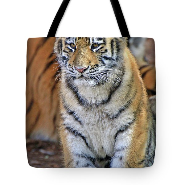 Baby Stripes Tote Bag by Scott Mahon