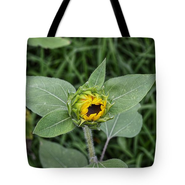 Baby Sunflower  Tote Bag