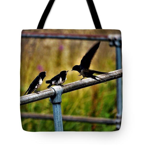 Baby Swallows Feeding Tote Bag