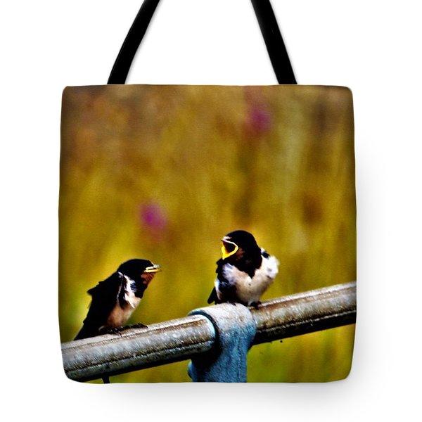 Baby Swallows Tote Bag