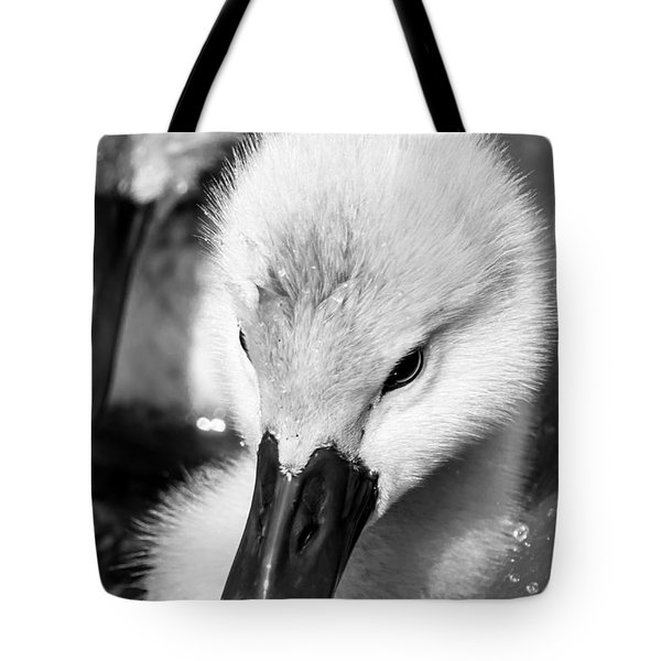 Baby Swan Headshot Tote Bag