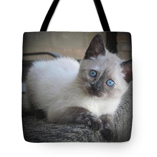 Baby Sweet Pea Tote Bag