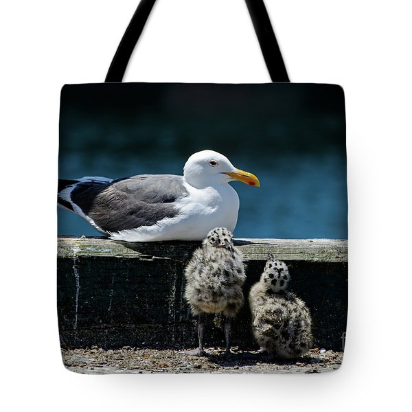 Baby Western Gulls With Mom Tote Bag