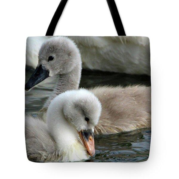 Babys Tote Bag