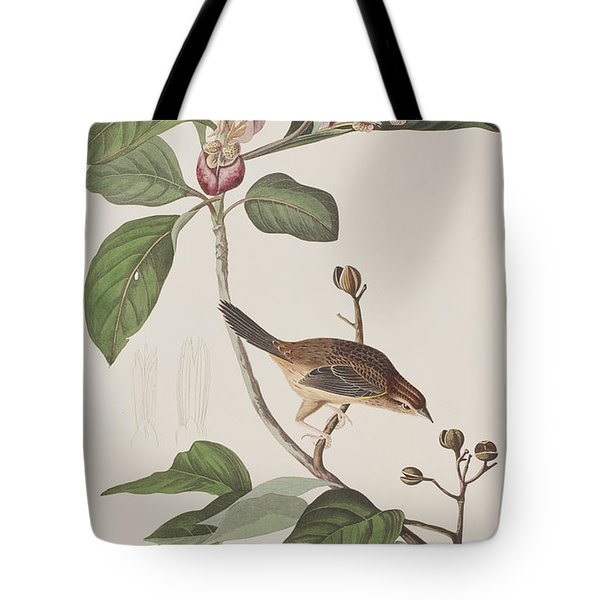 Bachmans Sparrow Tote Bag by John James Audubon
