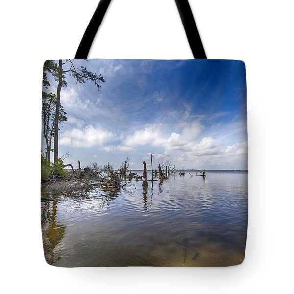 Back Bay View Tote Bag