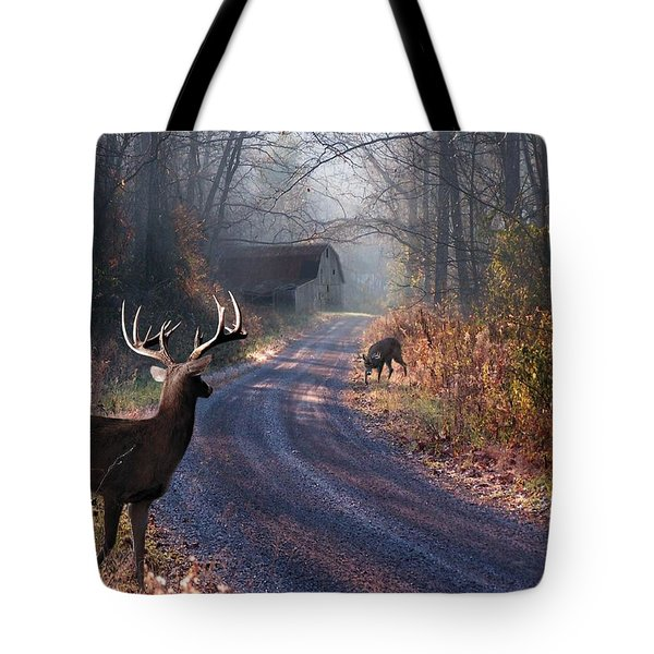 Back Home Tote Bag by Bill Stephens