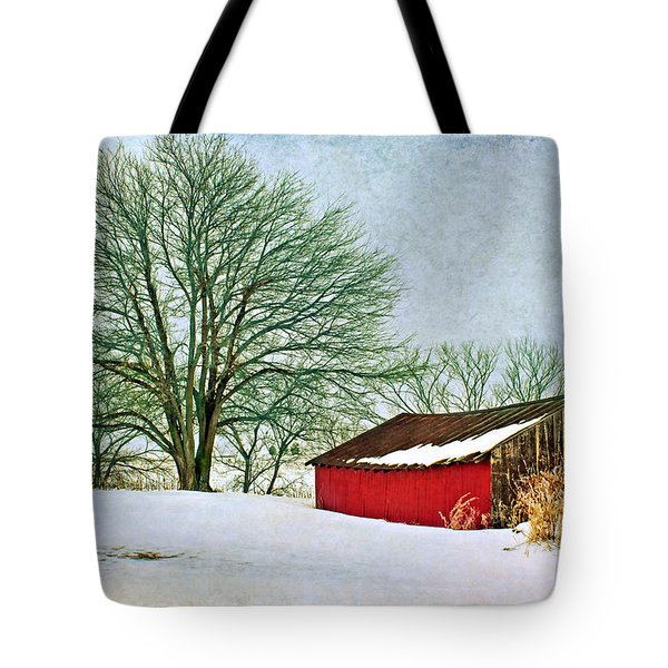 Back In The Day Tote Bag by Nikolyn McDonald