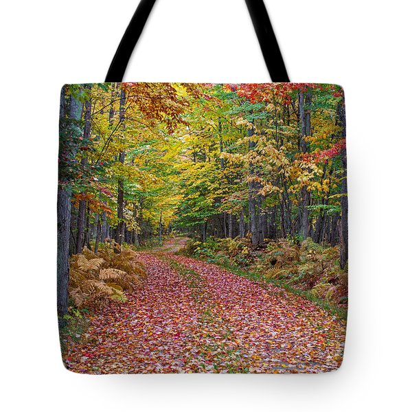 Back Road Color Tour  Tote Bag