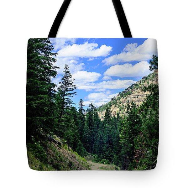 Back Roads Tote Bag