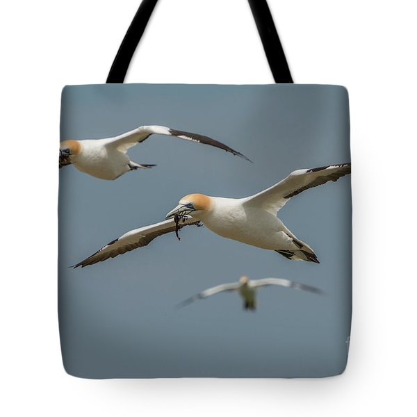 Back To The Colony Tote Bag