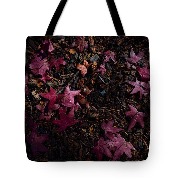 Back To The Earth Tote Bag