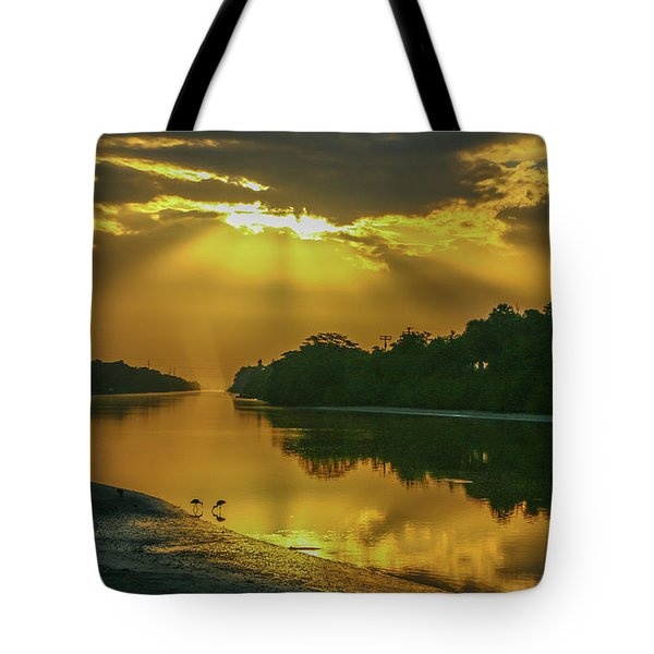 Tote Bag featuring the photograph Back Up Reflection by Tom Claud