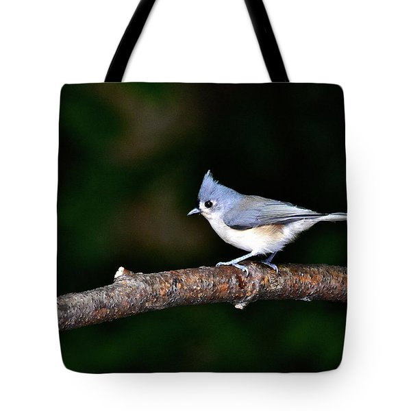 Back Yard Bird Tote Bag