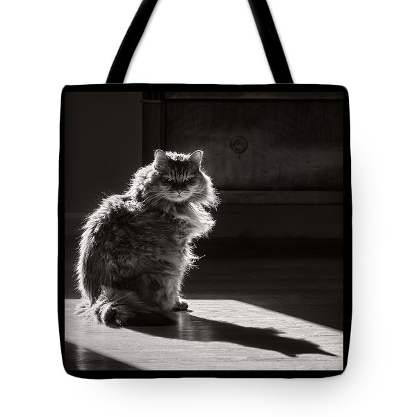 Backlight Portrait Tote Bag