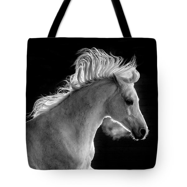 Backlit Arabian Tote Bag by Wes and Dotty Weber