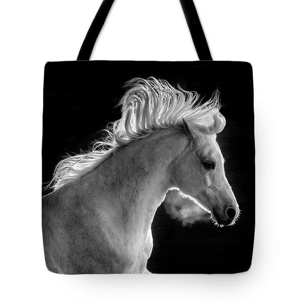 Backlit Arabian Tote Bag