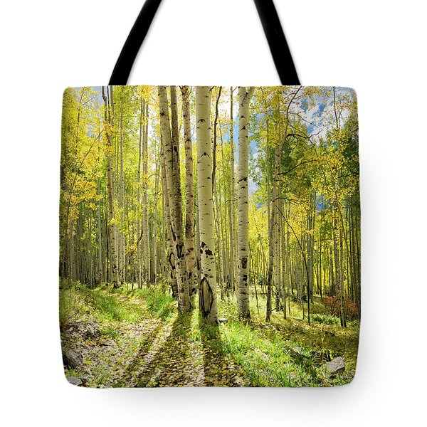 Backlit Aspen Trail Tote Bag