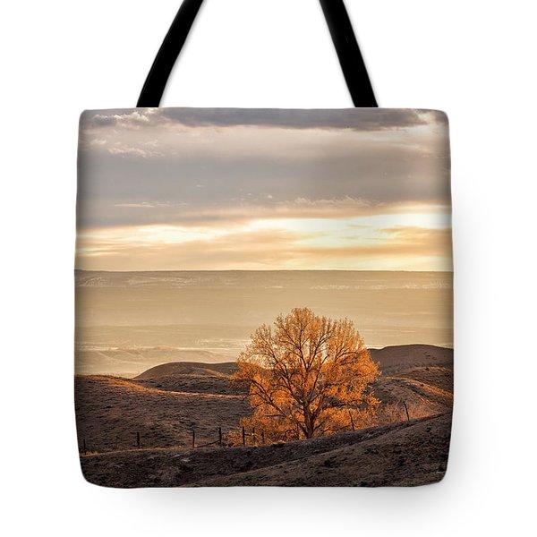 Backlit Cottonwood Tote Bag