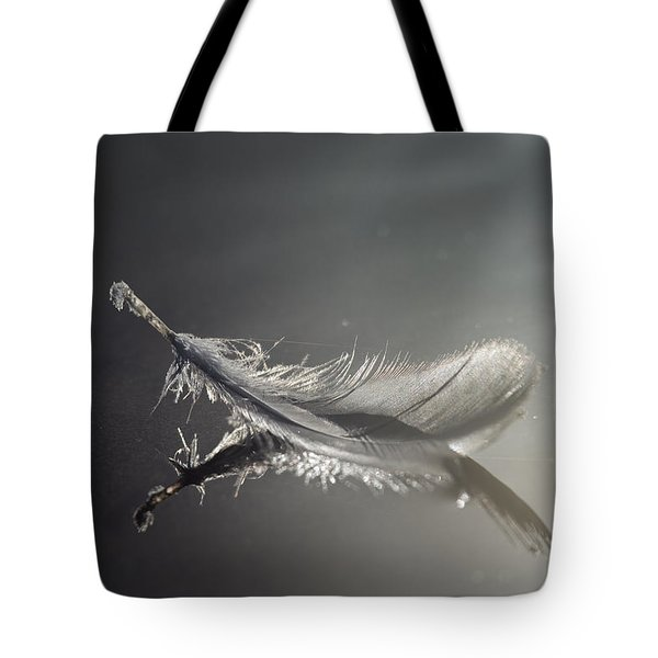 Backlit Feather Tote Bag